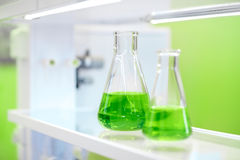 Flasks with green liquid in a chemistry lab. Flasks with green liquid on the background of the chemical laboratory Royalty Free Stock Photos