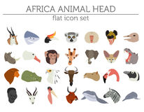 Flat Africa flora and fauna map constructor elements. Animals, b Royalty Free Stock Photo