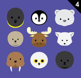 Flat Animal Faces Icon Cartoon Vector Set 4 (Arctic) Royalty Free Stock Image