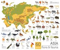 Flat Asian flora and fauna map constructor elements. Animals, bi. Rds and sea life isolated on white big set. Build your own geography infographics collection Stock Photography