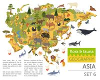 Flat Asian flora and fauna map constructor elements. Animals, bi. Rds and sea life isolated on white big set. Build your own geography infographics collection Stock Photos
