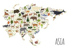 Flat Asian flora and fauna map constructor elements. Animals, bi. Rds and sea life isolated on white big set. Build your own geography infographics collection Stock Images