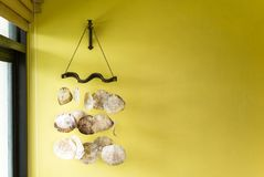 Flat bali seashells decoration on yellow wall. Natural light. Home interior concept Stock Photography