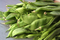 Flat bean. The image shows flat beans from vegetable garden. Perfect to made a healthy life  and a balanced diet Royalty Free Stock Image