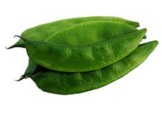 Flat Bean on white background royalty free stock photography