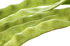 Flat Beans Isolated Stock Photo