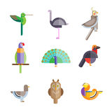 Flat birds made from geometric figures Stock Photography