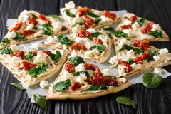 Flat bread with hummus, sun-dried tomatoes, spinach and goat cheese close-up. horizontal. Flat bread with hummus, sun-dried tomatoes, spinach and goat cheese royalty free stock photo