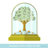 Flat business illustration money tree. Flat design vector concepts icon of finance and business,money tree with seeds Stock Photos