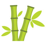 Flat cartoon green bamboo icon isolated on white background. Element for asian and oriental banners, labels and infographic Stock Photos