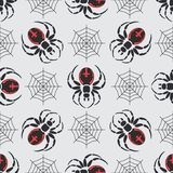 Flat color vector seamless wildlife fauna pattern with black widow spider.   Royalty Free Stock Photos