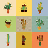 Flat colorful illustration of succulent plants and cactuses in pots in retro colors. Royalty Free Stock Photos