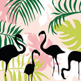 Flat composition leaves and flamingo Royalty Free Stock Image