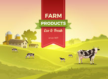 Flat cow field countryside building vector. Flat cow on field and countryside buildings infographic template vector illustration. Natural eco and fresh farm Stock Photo