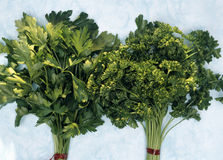 Flat and curly parsley Royalty Free Stock Photos
