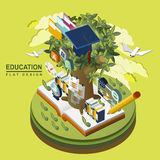 Flat 3d isometric education concept illustration over green. Background Royalty Free Stock Images