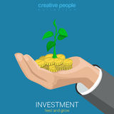 Flat 3d isometric vector investment grow business coin plant Stock Photo