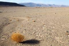 Flat desert Royalty Free Stock Image