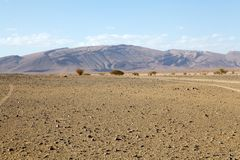 Flat desert Stock Photos
