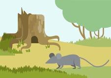 Flat design cartoon vector wild animals pets birds Stock Photography