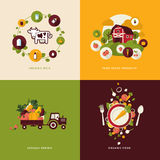 Flat Design Concept Icons For Organic Food Stock Images