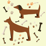 Flat design of the dog. Doberman and dachshund Stock Photography