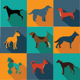 Flat design dog icon set Stock Photo