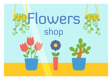 Flat design flowers shop facade icon store modern awning architecture window exterior and market front urban business Stock Photo