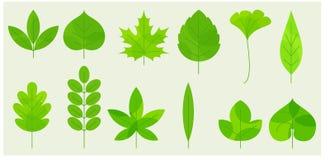 Fresh leaves icons royalty free illustration