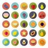 Flat Design Fruit Circular Vector Icon Set Stock Image