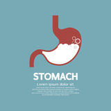 Flat Design Human's Stomach Royalty Free Stock Image
