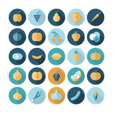 Flat design icons for fruits and vegetables. Vector eps10 with transparency Stock Images