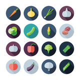 Flat Design Icons For Vegetables Royalty Free Stock Photography