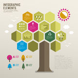 Flat design infographic with tree element Royalty Free Stock Images
