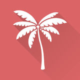Flat design palm tree Stock Photos