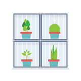 Flat Design Potted Plants In The Box Stock Image
