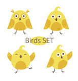 Flat design vector birds icon set. Royalty Free Stock Photos