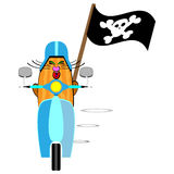 Flat designed cartoon travelling cat. Flat designed vector illustration of a cat on the tiny motorbike Stock Photos