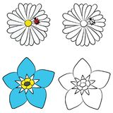 Vector Illustration of Flat Drawings of Chamomile and Forget-me-Not royalty free illustration