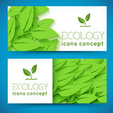 Flat eco leaf banners concept. Vector illustration. Design template for your design Royalty Free Stock Image