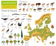 Flat European flora and fauna map constructor elements. Animals,. Birds and sea life  on white big set. Build your own geography infographics collection. Vector Stock Images