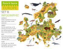 Flat European flora and fauna map constructor elements. Animals, birds and sea life isolated on white big set. Build your own geo royalty free illustration