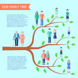 Flat Family Tree Poster Royalty Free Stock Images