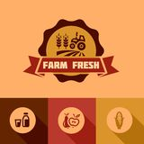Flat farm fresh design elements Royalty Free Stock Image
