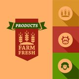 Flat farm fresh design Royalty Free Stock Photos