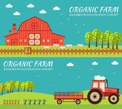 Flat farm in village set sprites and tile sets. instruments, flowers, vegetables, fruits, hay, farm building, animals vector illustration