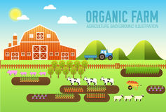 Flat farm in village set sprites and tile sets. instruments, flowers, vegetables, fruits, hay, farm building, animals Stock Photo