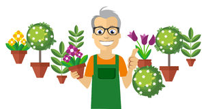 Flat Florist. Colorful Flowers and Little Trees on Background. Stock Photo