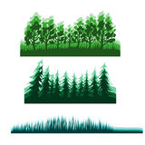 Flat forest background Stock Photo