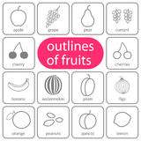 Flat fruits outlined coloured Stock Image
